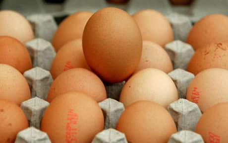 eggs_1699425c